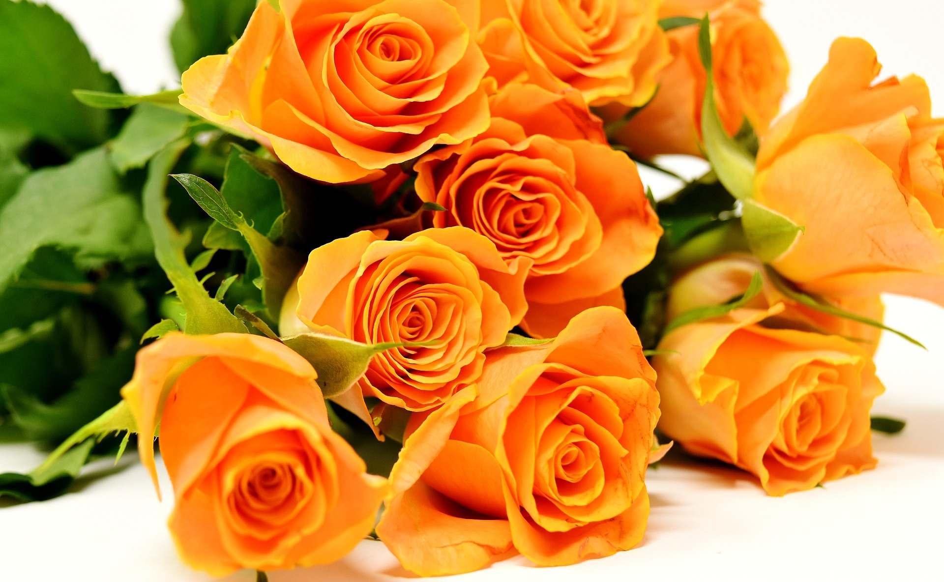 Онлайн поръчка и доставка на красиви цветя и букети
